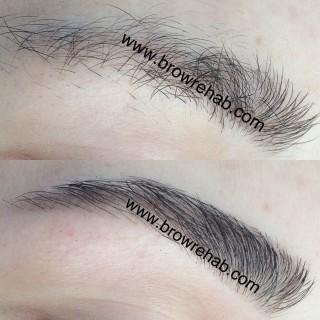 Brow Rehab | Eyebrow Tinting