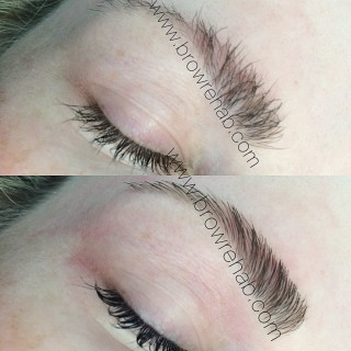 Brow Rehab | eyelash tinting | eyebrow tinting